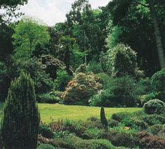 fernhill-gardens.jpg (34217 bytes)