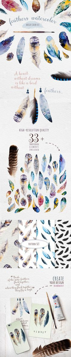 Bright watercolour feathers kit on Behance