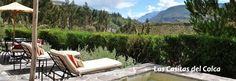 If you're traveling to Colca Canyon, Las Casitas del Colca are a good option to stay and have a good time. travel with Kuoda (www.kuodatravel.com)