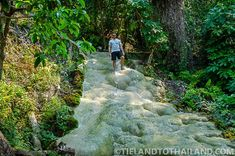 CHIANG MAI: Walking up the Sticky Waterfalls in Chiang Mai – Bua Thong Sticky Waterfall