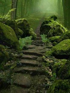 I want to walk here...
