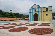 Chuao, Aragua, Venezuela!! <3 South America, Natural Beauty, Paradise, Mansions, Country, House Styles, Nature, Travel, Charms
