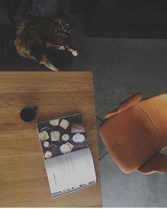 Primum Chair in cognac leather #primumchair #diningroom #diningchair #kitchen #chair