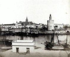 PRECIOSA estampa d la @torredelorosvq desde la Calle Betis. Los muelles, los barcos y la Real Maestranza d Artillería