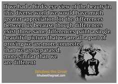 The Beauty in Diversity - Ibhubesi The Great
