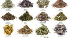 plantas quiebra farmaceuticas