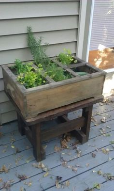 My new Herb garden, Old wooden box with a window top on an old wooden end table :)