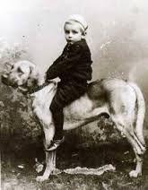 Broholmer (a Danish mastiff), vintage photo boy riding dog. Vintage Dog, Vintage Children, Clever Dog, Vintage Pictures, Beautiful Children, Vintage Photography, I Love Dogs, Danish, Best Dogs