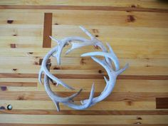 Sheds Decor / Wreath/ Fine Art / Deer Antler/ Shabby by ShedsDecor, $228.00