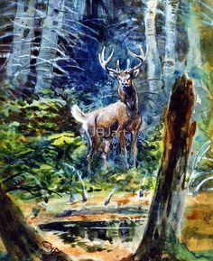 Deer in the dell
