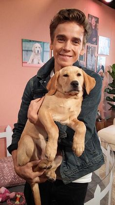 I've been telling @Joe_Sugg all about what it means to be a @guidedogs puppy! Thanks for the cuddles! #thismorning