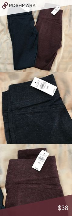 LOFT Seamed Ponte Leggings - 2 Pairs! BNWT Loft Seamed Ponte Leggings in maroon and navy blue. I wear a 00P and these are just a smidge too tight. I can get them on just fine actually but I would only be comfortable until I tried to eat 😉 Great for fall with boots or flats and a sweater. LOFT Pants Leggings