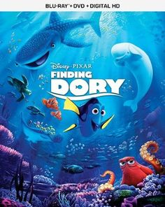 Dory can be found in