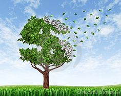 Losing your savings and managing your debt and financial budget with a green tree in the shape of a dollar sign with leaves falling off and floating away as an icon of wealth loss and downgrade or falling retirement funds due to spending, #money #currency