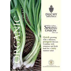 Onion : Spring: White Lisbon - Duchy Originals