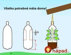 Muž sa podelil o geniálny tip, ako dopestovať bohatú úrodu zeleniny bez záhrady, na balkóne v bytovke!