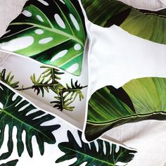 #foliage and foliage again. A must in decoration. #stylish and #tropical. #corinnestieglerdesigns #housedecor #summerhouse #outdoordecor#housedecor #tropicalhouse #decorpillow #tropicalcushions #greentropicdesigns