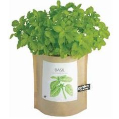 @Overstock - If youve always wanted to grow your own organic basil, this wonderful Garden-in-a-Bag is just what you need. Youll love the surprise youll get when you plant the included packet of seats in the soil in the bag and care for it like a normal plant. $9.05