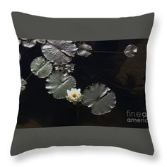 Beautiful Throw Pillow featuring the photograph Waterlily by Sandra Gallegos