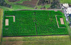 Sounders corn maze in Olympia features hometown hero Kasey Keller Soccer Art, Mls Soccer, Soccer Teams, Football Art, Amazing Maze, Labyrinth Maze, Ephemeral Art, Seattle Sounders, Hometown Heroes