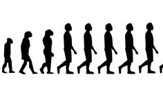 (Phys.org)—Harvard economist Jonathan Beauchamp has conducted a study of lifetime reproductive success (rLRS) of a small segment of the U.S. population and has concluded that there is evidence that humans are still evolving. In his paper published in Proceedings of the National Academy of Sciences, he describes the study he conducted, his results and why he believes we are still evolving despite our control over our environment.