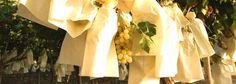 В долине Виналопо (Аликанте - Испания) есть уникальный виноград.Виноград созревает в бумажный пакет. Улучшение вкуса, цвета и могут быть съедены летом фрукты в зимние месяцы.