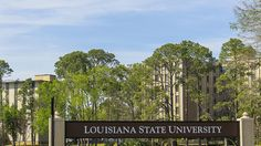 Lsu May File For Academic Bankruptcy | www.theedadvocate.org #educationnews #educationnews
