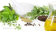 Natural antibiotics to stockpile now: 10 herbs and foods that kill superbugs