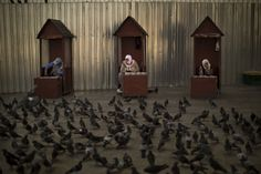 Vendedoras esperan en sus cabinas para vender comida para palomas en el centro de Estambul (Emilio Morenatti, 2016)