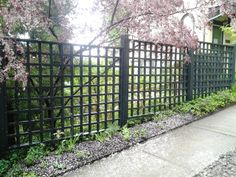 Wrought Iron Lattice Fencing