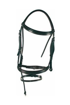 The Amigo Deluxe Bridle is thoughtfully designed to minimize pressure on the most sensitive areas of the horses head. This all leather bridle is very attractive with contrast . Equestrian Supplies, Tractor Supplies, Horse Head, Saddles, Vegetable Tanned Leather, Traditional Design, Headpiece, Horses, Horse Stuff