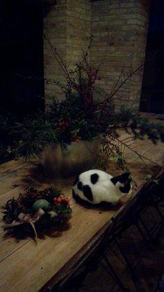 Allestimento natalizio: qui si vedono le mie passioni