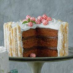 Peppermint-Hot Chocolate Cake | My Recipes.com http://www.myrecipes.com/recipe/peppermint-hot-chocolate-cake
