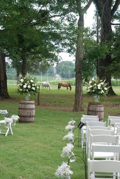 I like the whiskey barrels with flowers instead of an arch. I think it would also be less expensive this way