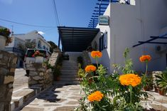 The entrance to Adonis Hotel, Apollon, Naxos, Greece Entrance, Naxos Greece, Patio, Island, Vacation, Outdoor Decor, Plants, Travel, Sea