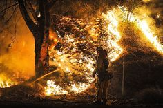 The Price of Climate Change: Wildfires Are Burning Through the National Forest Budget   TakePart