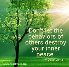 Don't let the behavior of others destroy your inner peace ~ Dalai Lama What Makes You Happy, Are You Happy, Don't Let, Let It Be, Inspirational Verses, Inspiring Sayings, All That Matters, Dalai Lama, Inner Peace