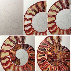 Watercolor Projects, Watercolor Paintings, Art Sketches, Art Drawings, Sam Cannon, Natural Form Art, Shell Art, Ammonite, Silk Painting