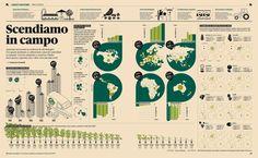 infografia campo