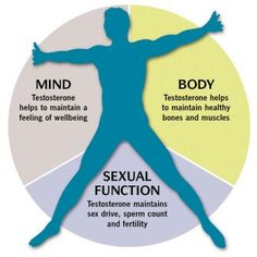 Men and women can get a lot of health benefits with elevated testosterone levels in the blood. Testosterone is the male hormone responsible for regulating muscle growth, nourishing male reproductive health and functions, supporting vitality and physical p Testosterone Therapy, Best Testosterone Boosters, Natural Testosterone, Boost Testosterone, Libido Boost, Bioidentical Hormones, Stress, Mental Health, Boxing