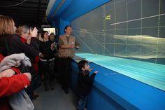 10 Idees De Visite Entreprises Mer Peche Marine Visite Entreprise Peche