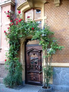 One of my favorite doors in all of Gießen, Germany.