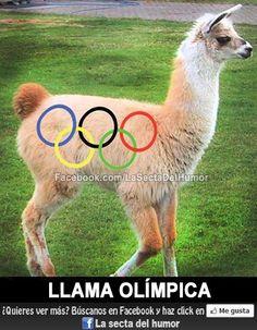 Llama olímpica.  Únete a nosotros: http://facebook.com/LaSectaDelHumor