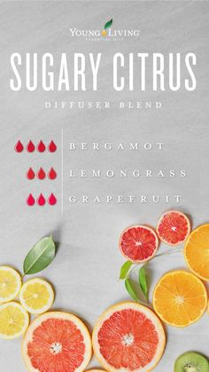Young Living 213991419781142449 - 6 Bergamot Essential Oil Uses Bergamot Essential Oil Uses, Grapefruit Essential Oil, Essential Oil Perfume, Doterra Essential Oils, Essential Oil Diffuser, Essential Oil Blends, Yl Oils, Lemongrass Essential Oil Uses, Essential Oil Cleaner