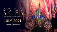 O que poderia ser mais perfeito este ano do que uma visita a um parque temático do complexo Walt Disney World e ainda ter a oportunidade de assistir aos seus tradicionais espetáculos de fogos.