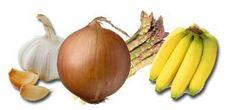 Prebiotique- ces aliments riches en inuline,  fructo-oligo-saccharides contribuent à la bonne santé de la flore intestinale: topinambours, oignons, l'ail, banane, l'orge,ces fibres végétales non assimilables par l'intestin qui favorisent la croissance des bactéries intestinales bénéfiques. et développent une importante action à l'intérieur de l'intestin. L'inuline pas digestible par les enzymes de l'intestin est une fibre alimentaire soluble. L'inuline est utilisée par la flore microbienne