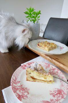Apfel- und Topfenstreuselkuchen mit Knusper - Bine kocht! Bread, Canning, Sweet, Food, Yogurt, Cooking, Apple Strudel, Souffle Dish, Apple Tea Cake