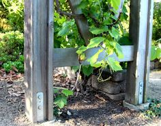How to build a beautiful DIY pergola ( beginner friendly DIY grape arbor )! Free building plan with step by step drawings and lots of detailed photos. Build it easily for your garden without buying pergola kits! Pergola Cost, Building A Pergola, Small Pergola, Pergola Garden, Pergola Swing, Pergola Attached To House, Metal Pergola, Cheap Pergola, Wooden Pergola