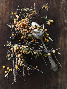 Sea buckthorn from the We You They Ate...blog (in English)