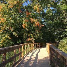 Less than 30 minutes from Toronto is a hidden paradise that serves as the perfect spot to escape the city for a couple hours.Nestled along theMis...